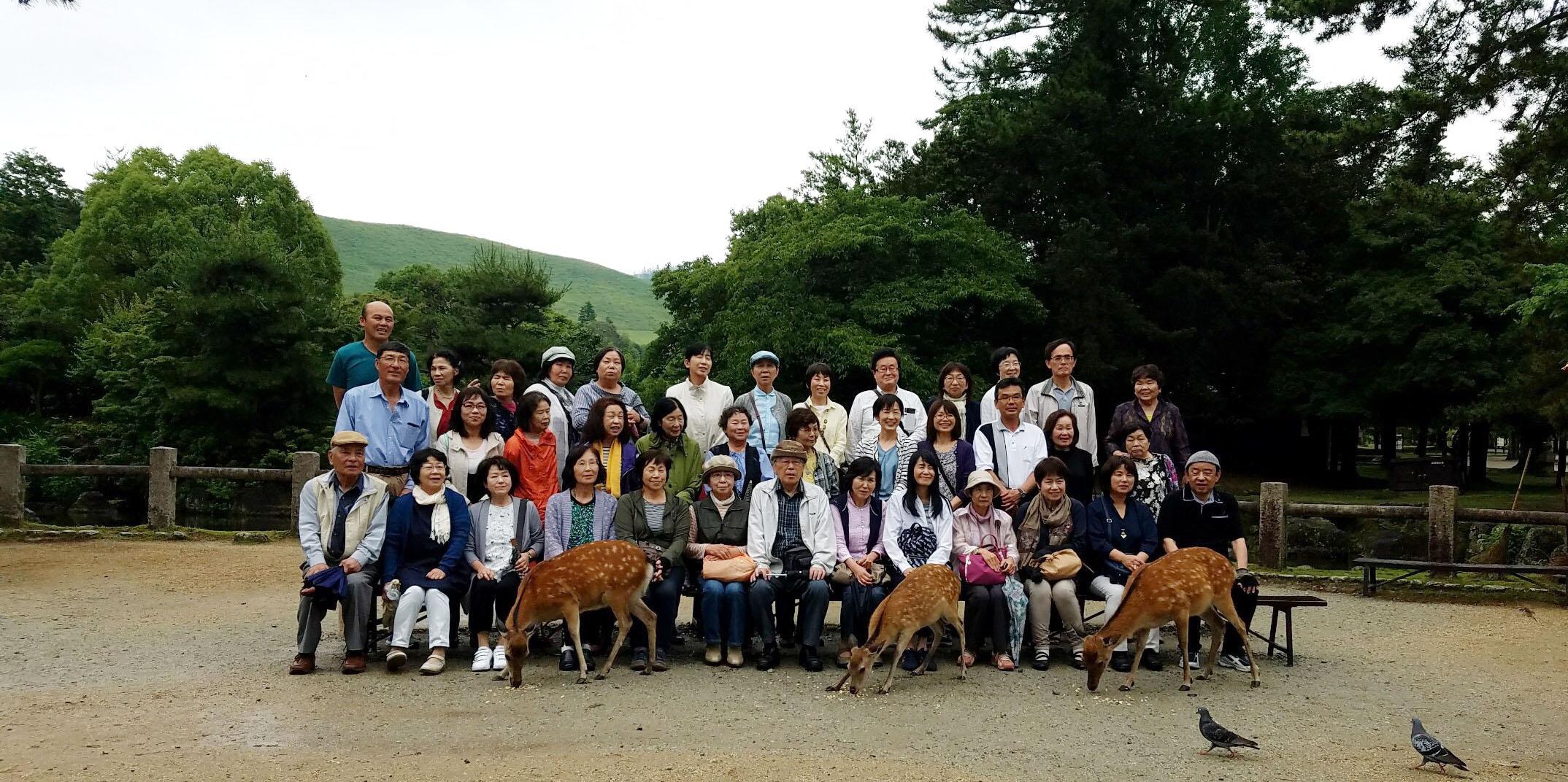 奈良を満喫!初夏の紫陽花&東大寺コース催行!