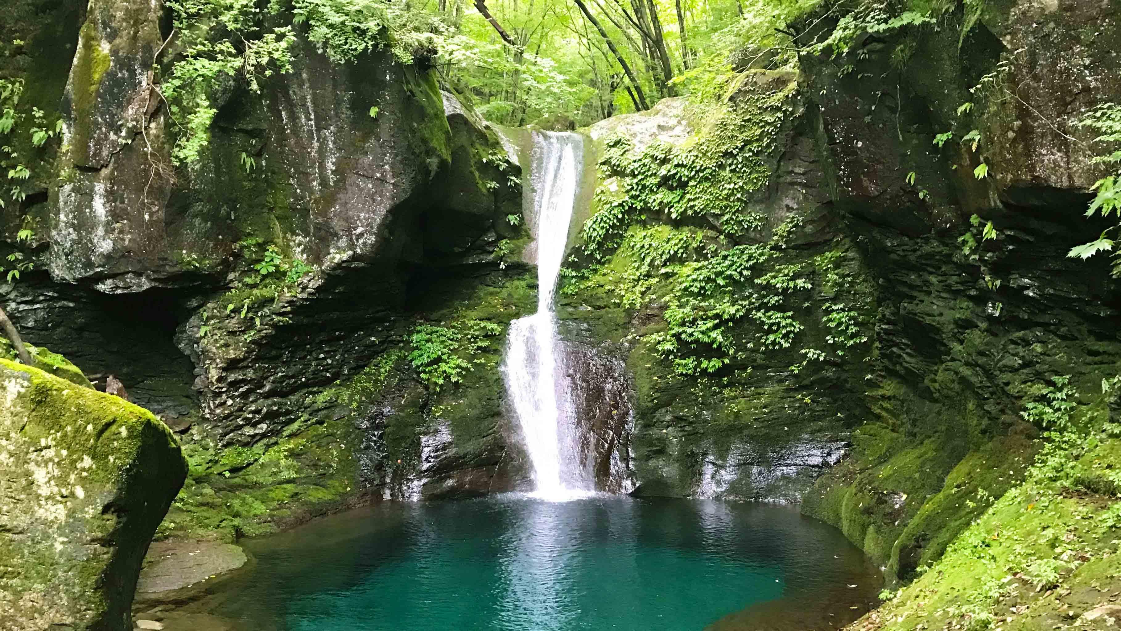 栃木 那須・日光ロイヤルツーリズムと秘境の滝ツアー催行!