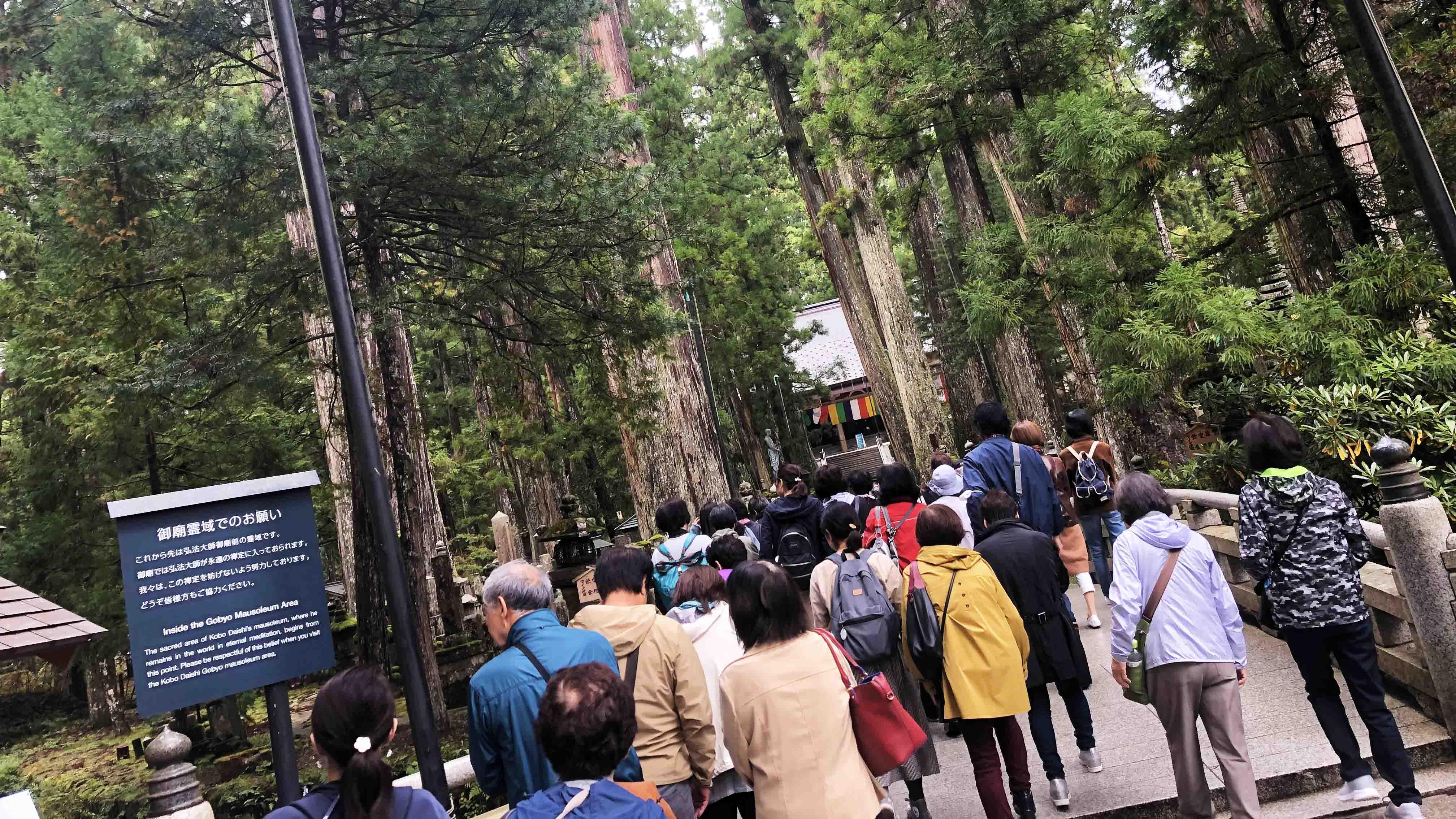 和歌山 高野山 ガイドと巡る奥之院と高野大滝ツアー催行!